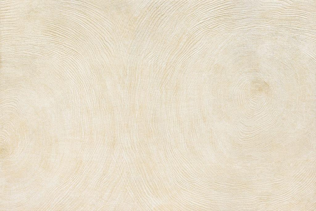 年轮木 / MC96801 / 600x900mm / 木纹砖