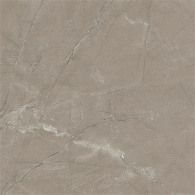 帕斯高灰 / CRS6634 / 600x600mm / 柔光大理石