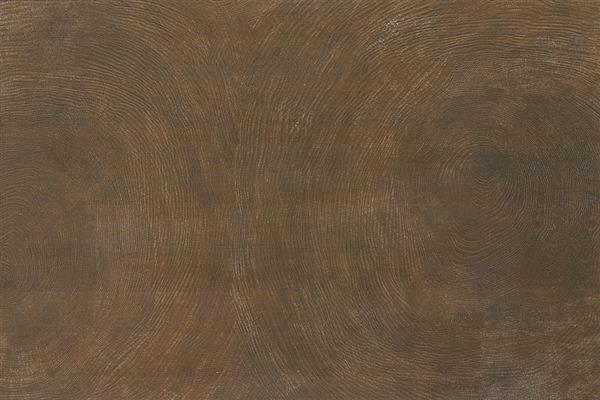 年轮木 / MC69806 / 600x900mm / 木纹砖
