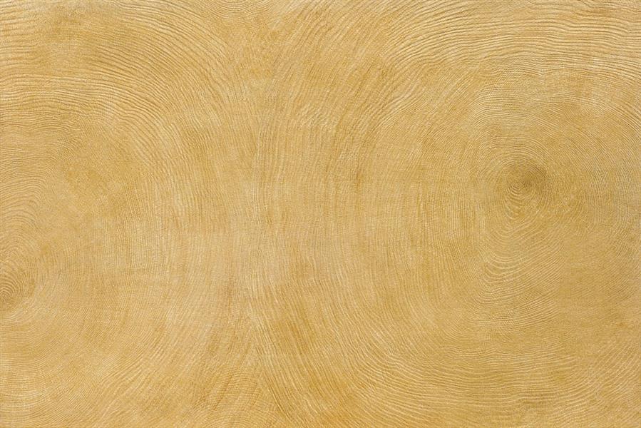 年轮木 / MC69805 / 600x900mm / 木纹砖