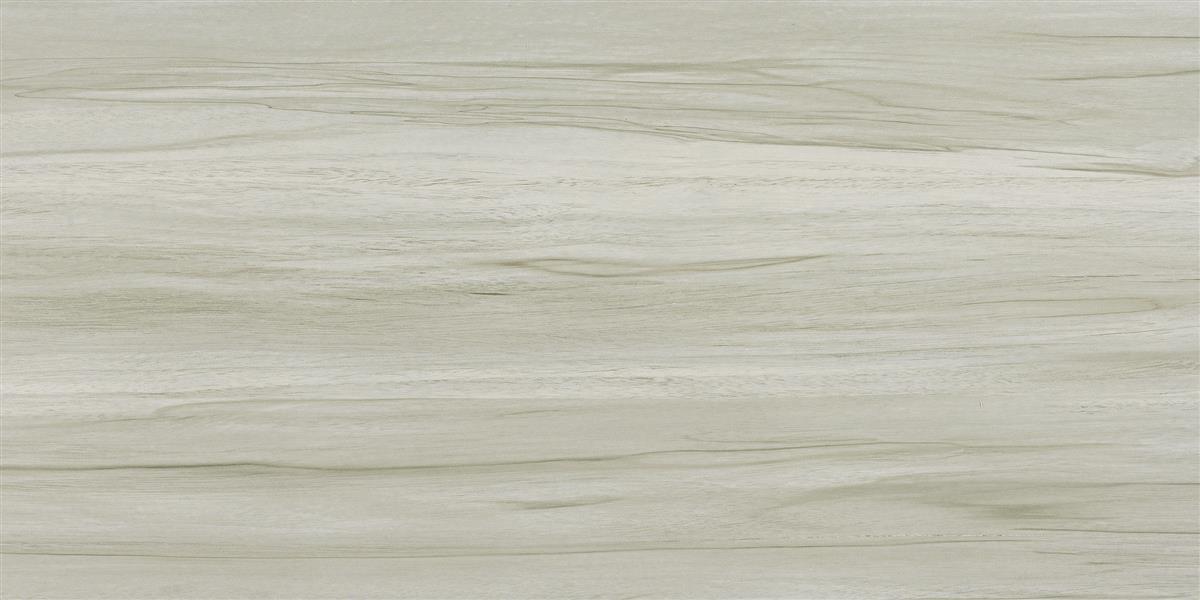 中生代木化石 / CM126511 / 600x1200mm / 木纹砖