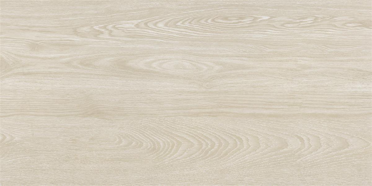 中生代木化石 / CM126512 / 600x1200mm / 木纹砖