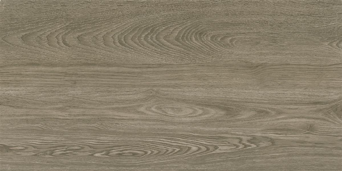 中生代木化石 / CM126513 / 600x1200mm / 木纹砖